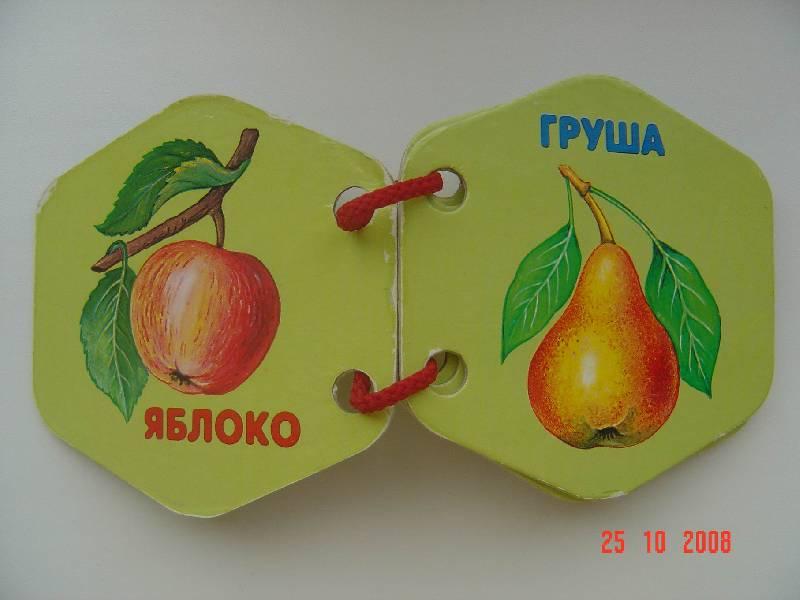 Иллюстрация 1 из 4 для Овощи-фрукты   Лабиринт - книги. Источник: Анна К.