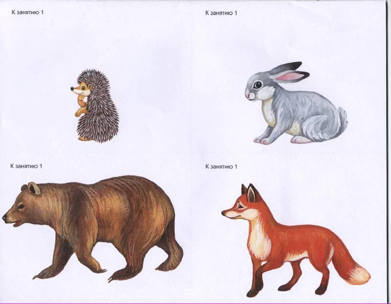 Иллюстрация 1 из 4 для Дошкольная математика. 2-й год обучения. Демонстрационный материал к занятиям с детьми 4-5 лет - Марина Касицына | Лабиринт - книги. Источник: РИВА