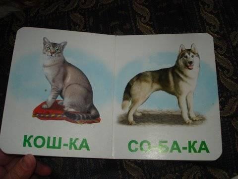 Иллюстрация 1 из 3 для Домашние животные. Мои первые книги (картонка) | Лабиринт - книги. Источник: Lutik_sun