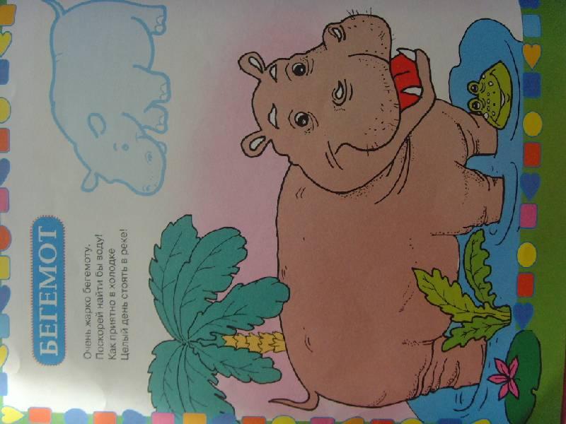 Иллюстрация 1 из 9 для Животные - Софья Буланова | Лабиринт - книги. Источник:........  Елена...........