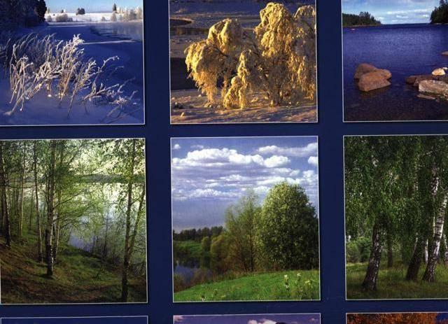 Иллюстрация 1 из 2 для Календарь 2009 Родные просторы 12804   Лабиринт - сувениры. Источник: Марина