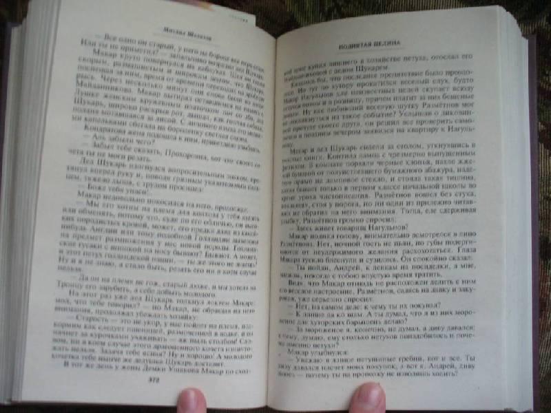 Иллюстрация 1 из 2 для Поднятая целина: Роман в 2-х книгах - Михаил Шолохов | Лабиринт - книги. Источник: Ценитель классики