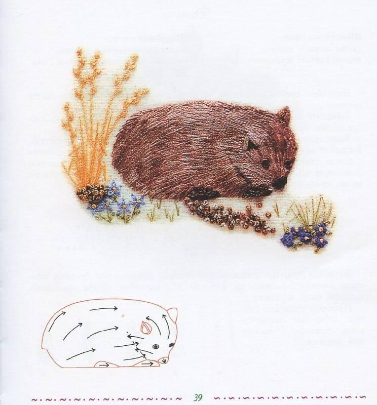 Иллюстрация 1 из 4 для Магия цветов. Вышиваем шелковыми и шерстяными нитями - Бредфорд, Лампе   Лабиринт - книги. Источник: Лабиринт-чит