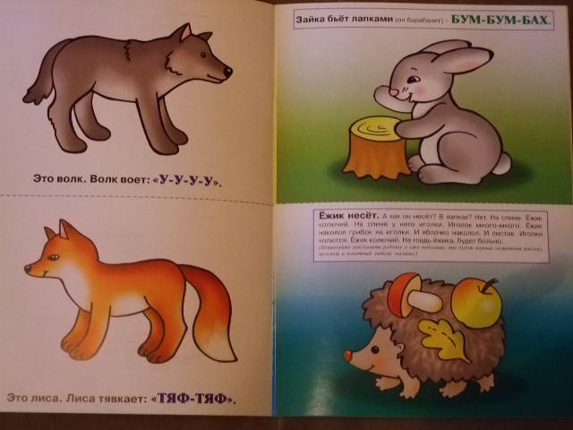 иллюстрации знакомство с дикими животными