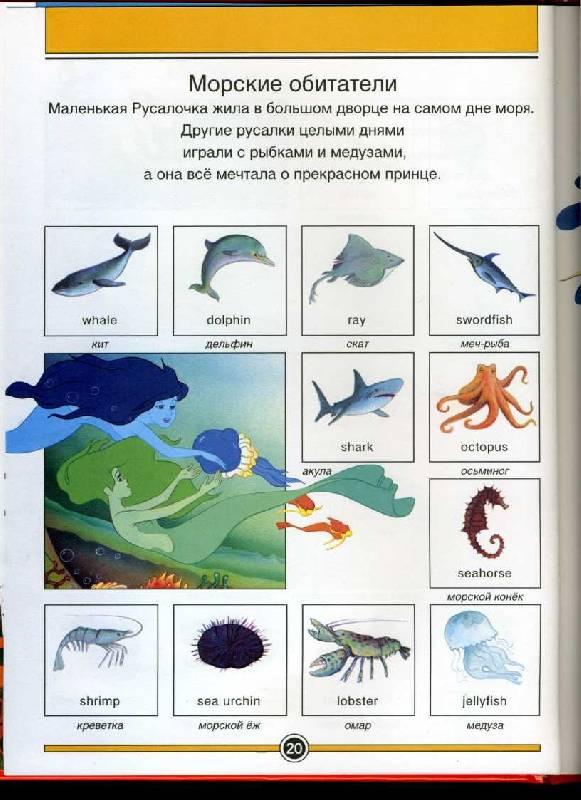Энциклопедии словари справочники