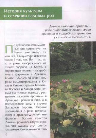 Иллюстрация 1 из 26 для Секреты выращивания роз - Зинаида Клименко   Лабиринт - книги. Источник: Galia