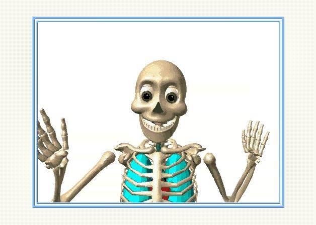 Иллюстрация 1 из 15 для Мое тело. Как оно устроено?: Интерактивная энциклопедия (CDpc) | Лабиринт - софт. Источник: Galia