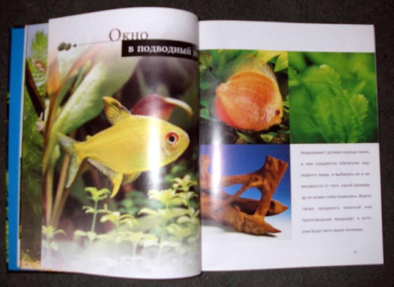Иллюстрация 1 из 25 для Рыбы и аквариумы: Самые красивые аквариумы и их обитатели   Лабиринт - книги. Источник: Катерина