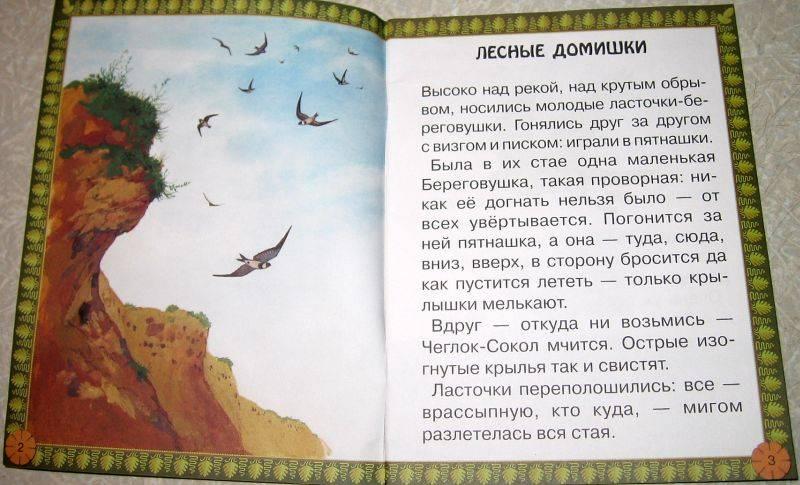 Иллюстрация 1 из 27 для Лесные домишки - Виталий Бианки | Лабиринт - книги. Источник: vvv