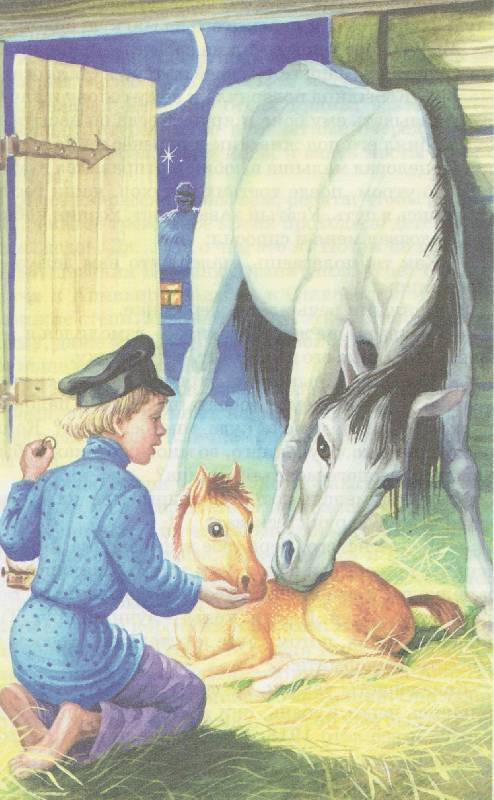 Иллюстрация 1 из 15 для Домашний зоопарк - Лия Гераскина | Лабиринт - книги. Источник: Наталья Плотникова