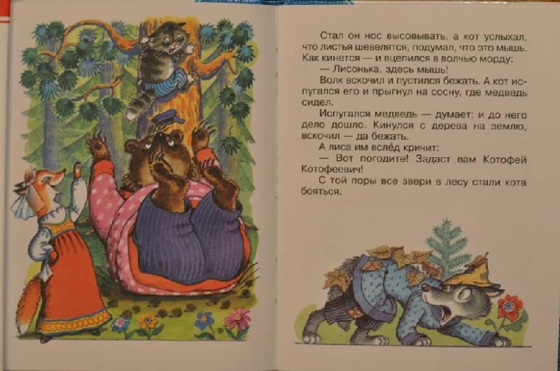 Иллюстрация 1 из 11 для Кот и лиса   Лабиринт - книги. Источник: Еленушка