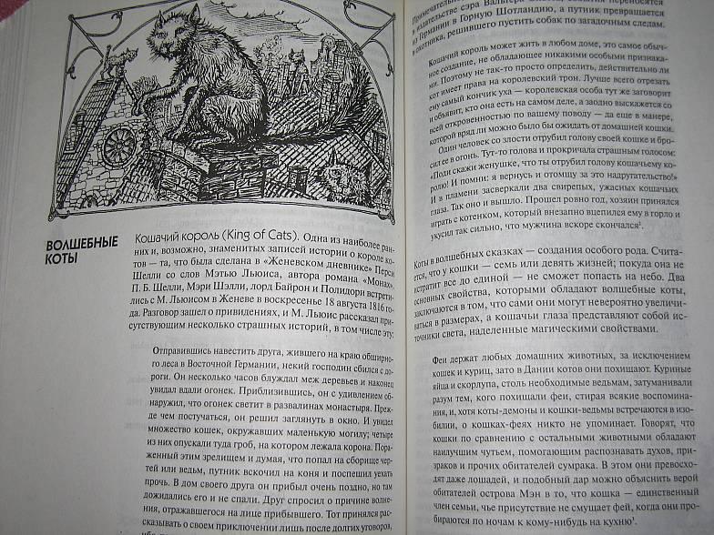 Иллюстрация 1 из 5 для Волшебные существа: Энциклопедия   Лабиринт - книги. Источник: Bookworm