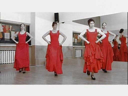 Иллюстрация 1 из 3 для Фламенко - Григорий Хвалынский | Лабиринт - видео. Источник: Ляпина  Ольга Станиславовна