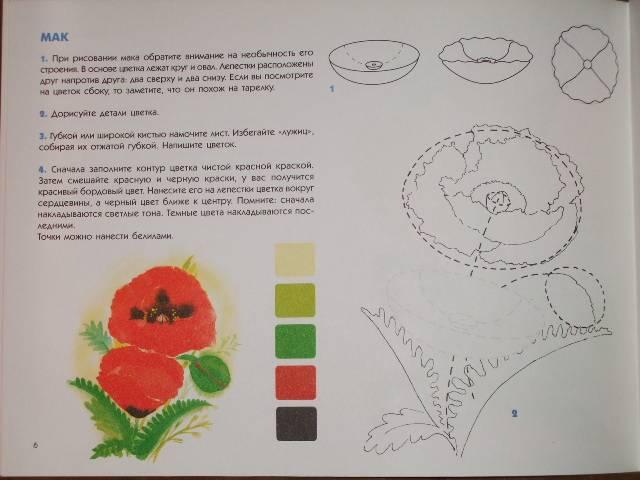 Иллюстрация 1 из 19 для Акварельные цветы. Учебное издание.   Лабиринт - книги. Источник: *  Надежда