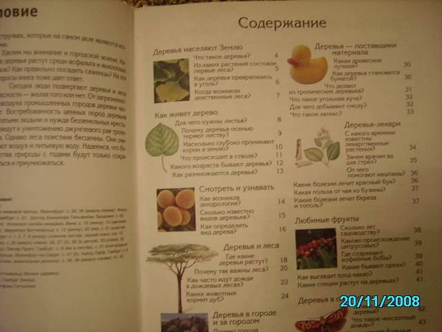 Иллюстрация 1 из 10 для Деревья - Ханнелоре Гильзенбах   Лабиринт - книги. Источник: Звездочка
