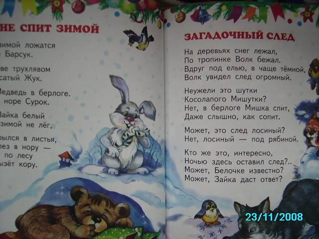 Иллюстрация 1 из 19 для Зимний карнавал (красная) - Владимир Степанов | Лабиринт - книги. Источник: Звездочка