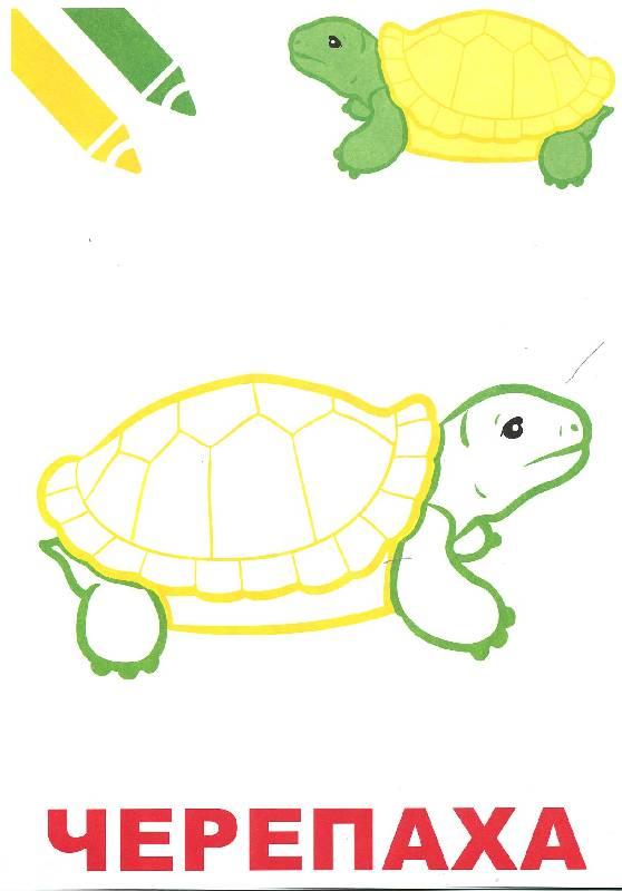 Крупные рисунки для раскраски