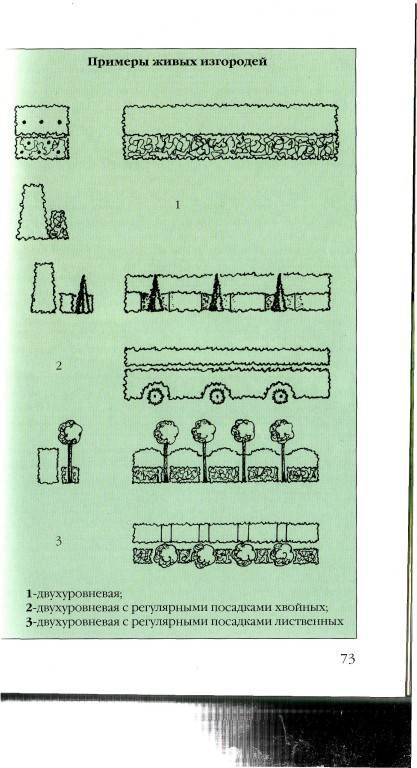 Иллюстрация 1 из 7 для Дизайн садового участка - Елена Немова | Лабиринт - книги. Источник: Паньков Александр Анатольевич