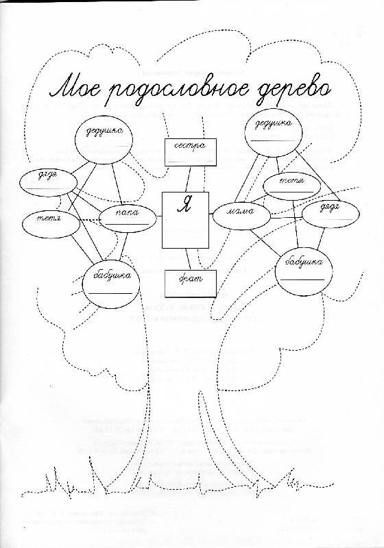 Картинки генеалогическое древо раскраска / picpool.ru