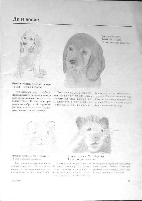 Иллюстрация 1 из 24 для Учимся рисовать животных - Ли Хэммонд | Лабиринт - книги. Источник: Caaat