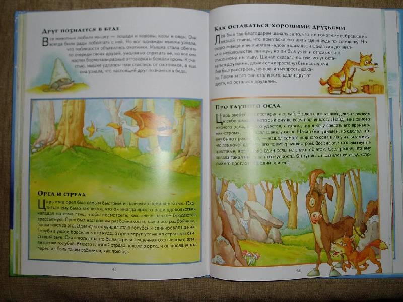 Иллюстрация 1 из 30 для Про зверей. Сказки, истории, притчи | Лабиринт - книги. Источник: Ира Б.