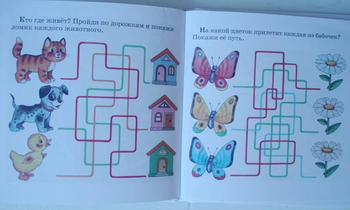 Иллюстрация 1 из 5 для Сенсорика - Юлия Соколова | Лабиринт - книги. Источник: Краснова Светлана Валерьевна