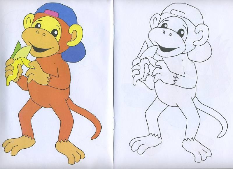 Иллюстрация 1 из 5 для Посмотри и раскрась: Джунгли | Лабиринт - книги. Источник: Pallada