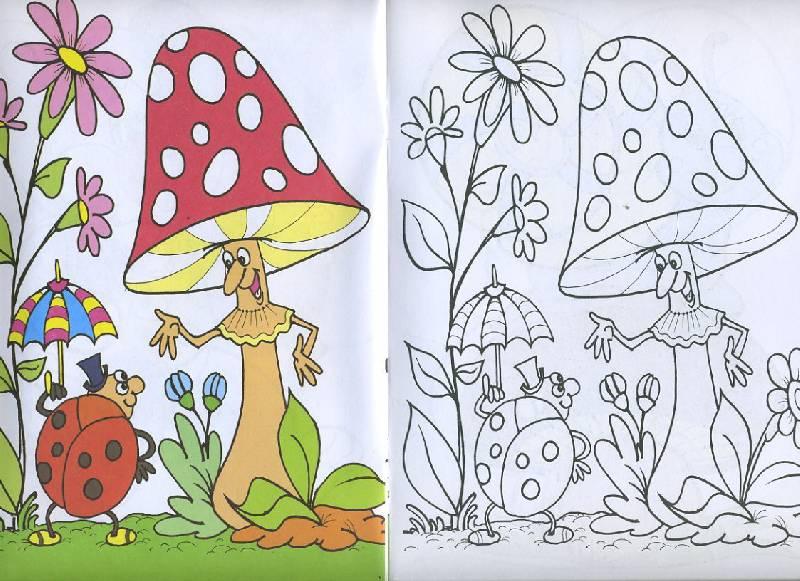 Иллюстрация 1 из 7 для Посмотри и раскрась: В лесу | Лабиринт - книги. Источник: Machaon