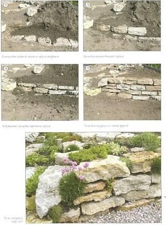 Иллюстрация 1 из 26 для Альпинарии, горки, каменистые сады - Юрий Марковский | Лабиринт - книги. Источник: Лабиринт-чит
