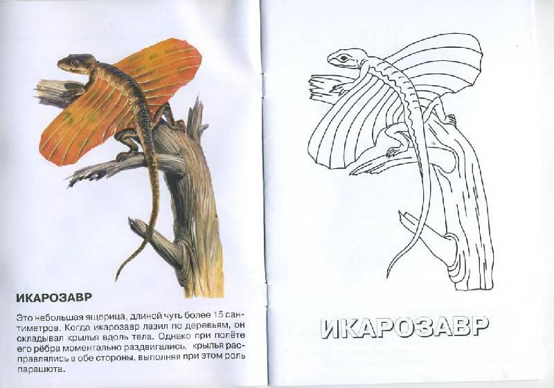 Иллюстрация 1 из 4 для Морганукодон. Мезозойская эра. Триасовый период   Лабиринт - книги. Источник: Pallada