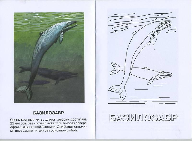 Иллюстрация 1 из 4 для Эндрюзархус. Кайнозойская эра. Палеогеновый период   Лабиринт - книги. Источник: Pallada