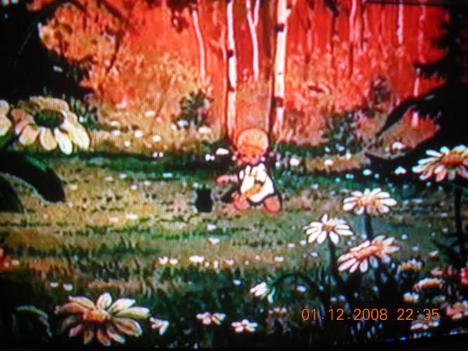 Иллюстрация 1 из 41 для Сборник мультфильмов №8: Цветик-семицветик | Лабиринт - видео. Источник: Плахова  Татьяна