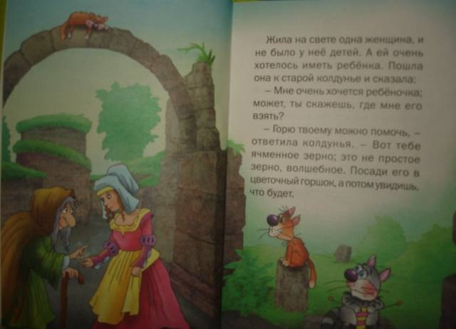 Иллюстрация 1 из 11 для Дюймовочка: Сказка - Ханс Андерсен | Лабиринт - книги. Источник: Настёна