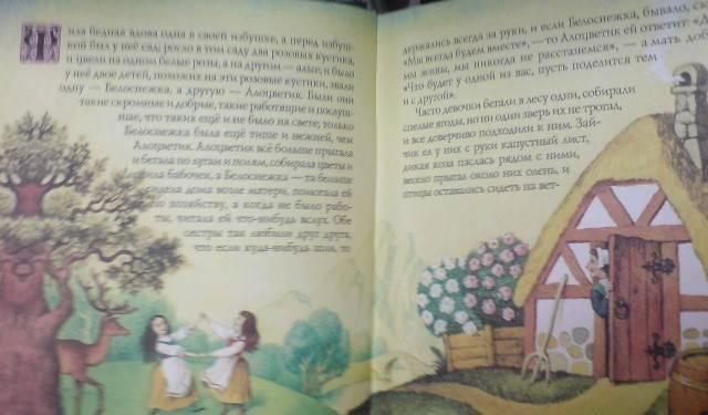 Иллюстрация 1 из 33 для Сказки - Гримм Якоб и Вильгельм | Лабиринт - книги. Источник: Настёна