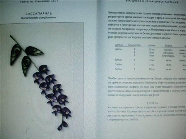 Иллюстрация 1 из 18 для Узоры из бумажных лент - Хелен Уолтер | Лабиринт - книги. Источник: света