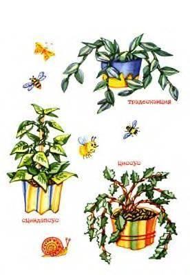 Иллюстрация 1 из 8 для Бумажный кактус - Татьяна Рогаткина | Лабиринт - книги. Источник: Пчёлка Майя