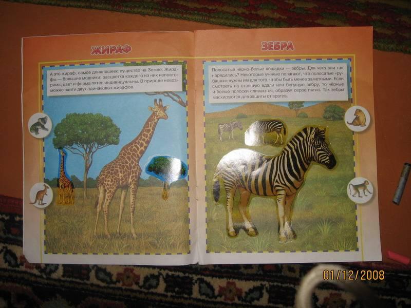 Иллюстрация 1 из 5 для Удивительные животные - И. Попова | Лабиринт - книги. Источник: Jasmin56