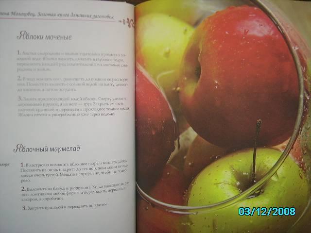 Иллюстрация 1 из 16 для Золотая книга домашних заготовок - Елена Молоховец | Лабиринт - книги. Источник: Звездочка