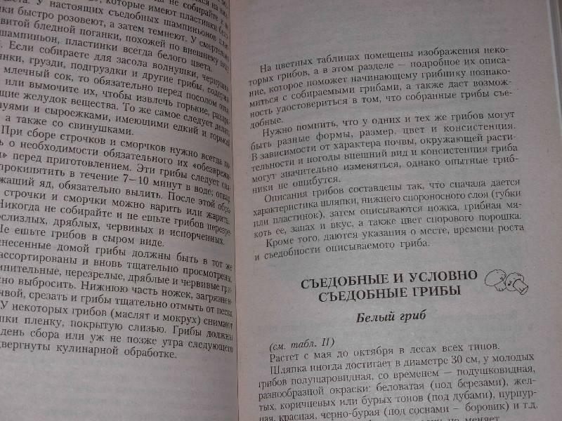 Иллюстрация 1 из 5 для Энциклопедия грибника - Лидия Гарибова | Лабиринт - книги. Источник: ---Ирина----