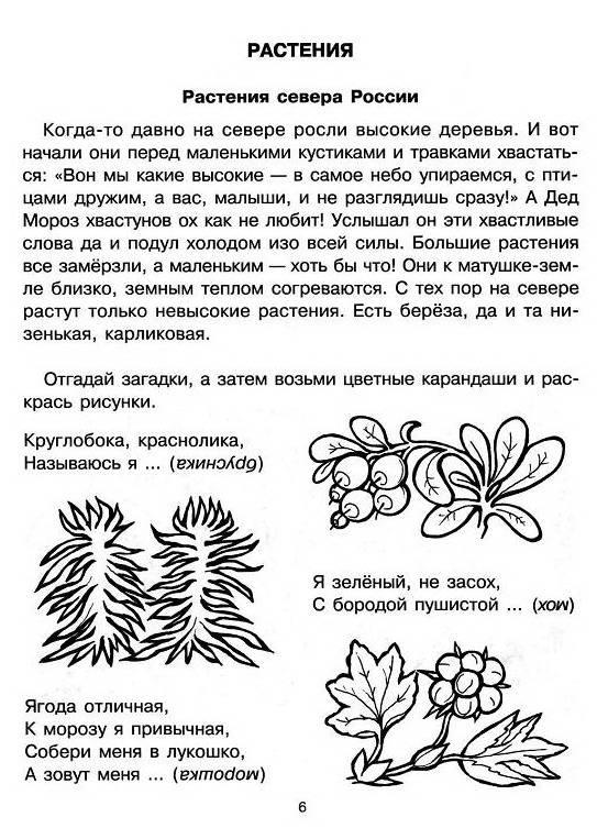 Иллюстрация 1 из 19 для Растения и животные России - Людмила Дерягина   Лабиринт - книги. Источник: Caaat