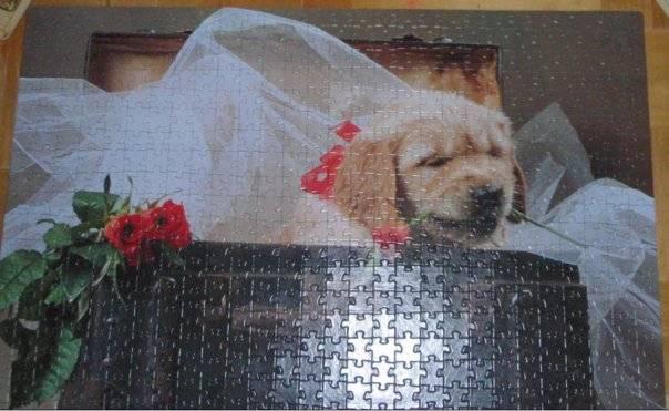 Иллюстрация 1 из 2 для Step Puzzle-560 78059 Подарок (Щенок в чемодане)   Лабиринт - игрушки. Источник: Hoty