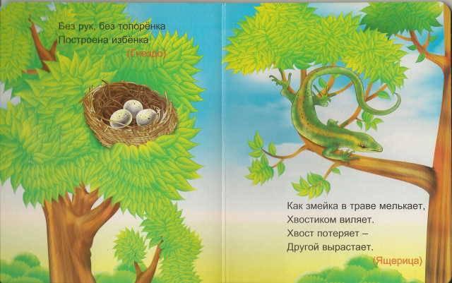Иллюстрация 1 из 8 для Сто один брат | Лабиринт - книги. Источник: _Елена_