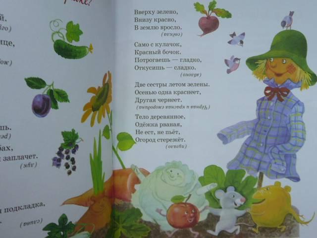 Иллюстрация 1 из 14 для Песенки и загадки малышам | Лабиринт - книги. Источник: Новичкова Елена Юрьевна