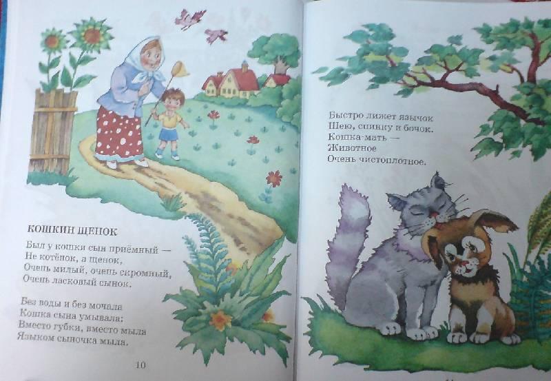 Иллюстрация 1 из 26 для Детям - Берестов, Усачев, Заходер | Лабиринт - книги. Источник: Настёна