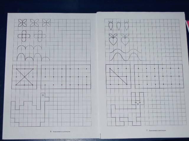 Иллюстрация 1 из 3 для Папка дошкольника: Знакомимся с клеточками   Лабиринт - книги. Источник: *  Надежда