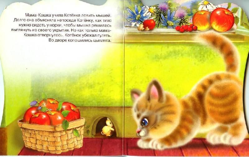 Иллюстрация 1 из 3 для Любопытный котенок - Елена Пыльцына | Лабиринт - книги. Источник: Zhanna