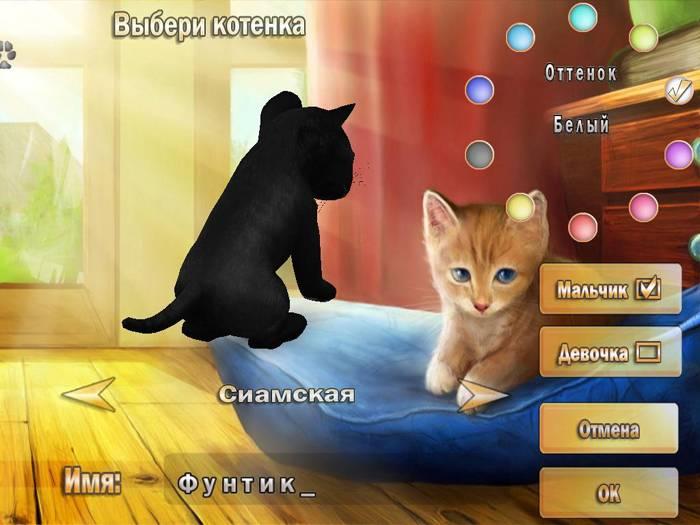 Иллюстрация 1 из 11 для 101 любимчик. Забавные котята (CDpc) | Лабиринт - софт. Источник: Galia