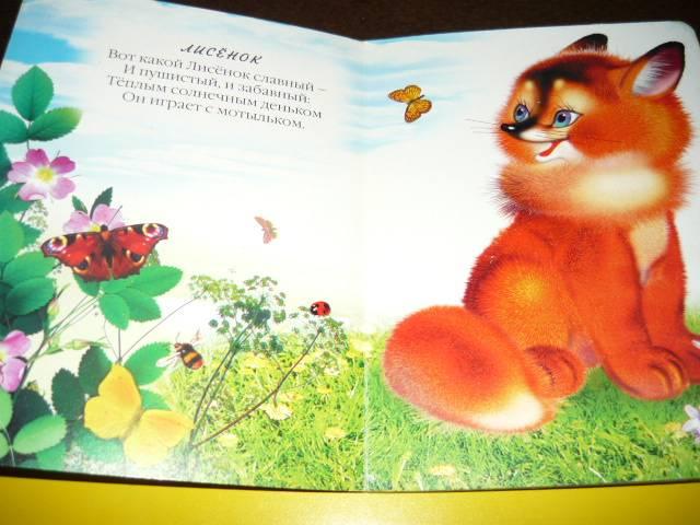 Иллюстрация 1 из 5 для Пушистые малыши - Владимир Степанов | Лабиринт - книги. Источник: Ромашка:-)