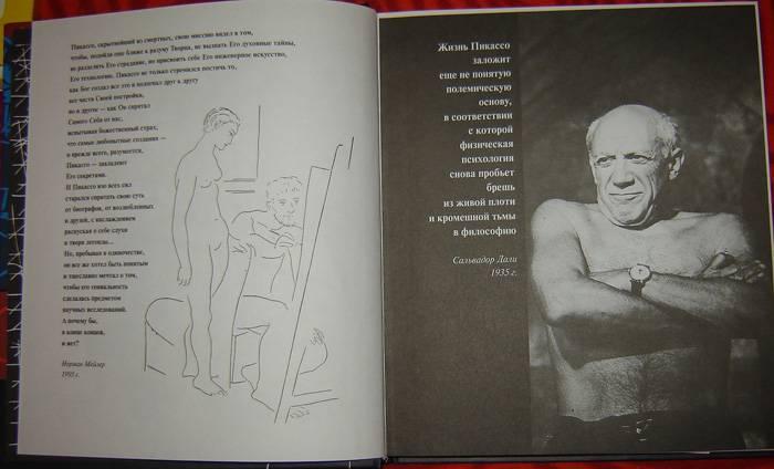 Иллюстрация 1 из 8 для Пикассо - Ирина Пименова | Лабиринт - книги. Источник: vybegasha