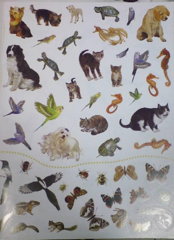 Иллюстрация 3 из 18 для Животные в городе. Живой мир планеты | Лабиринт - книги. Источник: Настёна